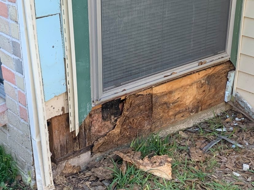 Water damage on exterior wood