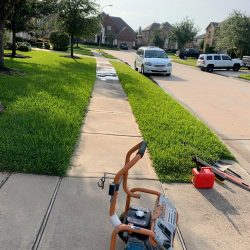 Garden mulch trimmed trees and grass2